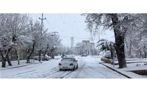 بارش برف و باران در گوشه و کنار استان اصفهان+فیلم