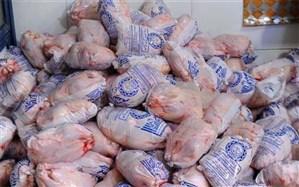 مجوز واردات ۵۰ هزار تن گوشت مرغ صادر شد