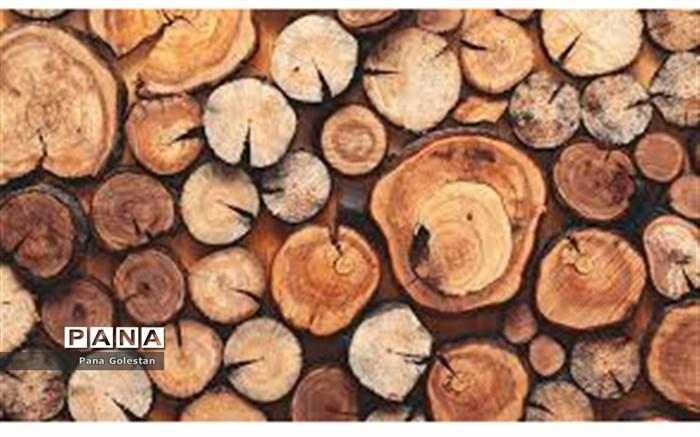 کشف چوب قاچاق در آزادشهر