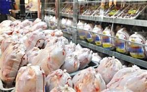 روزانه یکهزار و ۶۵۰ تن مرغ گرم از ۱۵ فروردین در تهران عرضه میشود