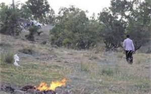وزش باد گرم، گسترش حریق برای جنگلهای گیلان را فراهم  کرد
