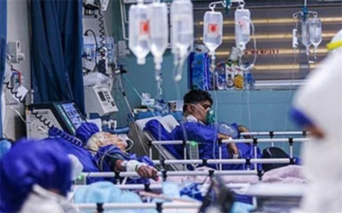 بستری 280 بیمار در بخشهای کرونایی در بیمارستانهای استان بوشهر