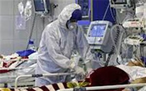 بستری 382 بیمار در بخشهای کرونایی در بیمارستانهای استان بوشهر