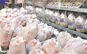 تولید مرغ از سرانه مصرف هم بالاتر است