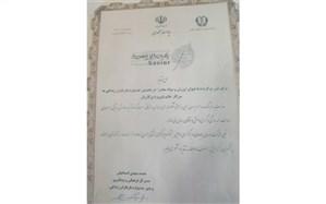 درخشش هنرمند زنجانی در جشنواره یاریگران زندگی