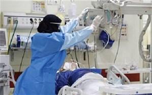 بستری 430 بیمار در بخشهای کرونایی در بیمارستانهای استان بوشهر