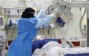 بستری 445 بیمار در بخشهای کرونایی در بیمارستانهای استان بوشهر