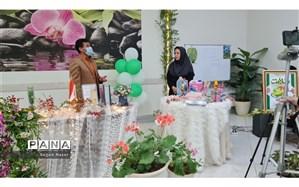 افتتاح نمایشگاه مجازی از وسایل دور ریختنی در فضای شاد دبستان محیط زیستی شهاب
