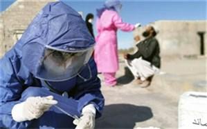 نظارتهای بهداشتی در مرزهای سیستان و بلوچستان تشدید شد