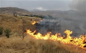 48 هکتار از اراضی طبیعی فیروزآباد در آتش سوخت