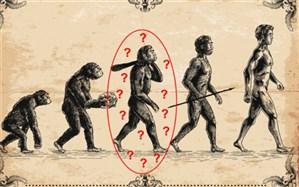 اجداد انسان میمونها نیستند