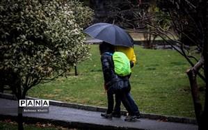 بارندگی در نیمه شمالی کشور؛ دمای 2 استان به زیر صفر میرسد