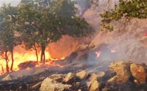 مهار  آتش سوزی جنگلهای گچساران