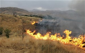 ارتفاعات دیل گچساران پس از ۲ بار مهار دوباره شعله ورشد