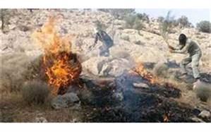 تداوم آتش سوزیها در جنگلهای گچساران