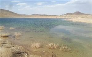 ۴٠٠ هزار قطعه لارو ماهی در منابع آبی تفتان رهاسازی شد