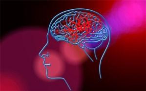 پیشبینی احتمال سکته مغزی با یک تراشه