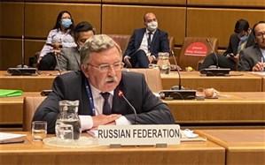 نماینده روسیه: کیفیت سند خروجی از نشست وین بر سرعت مذاکرات اولویت دارد