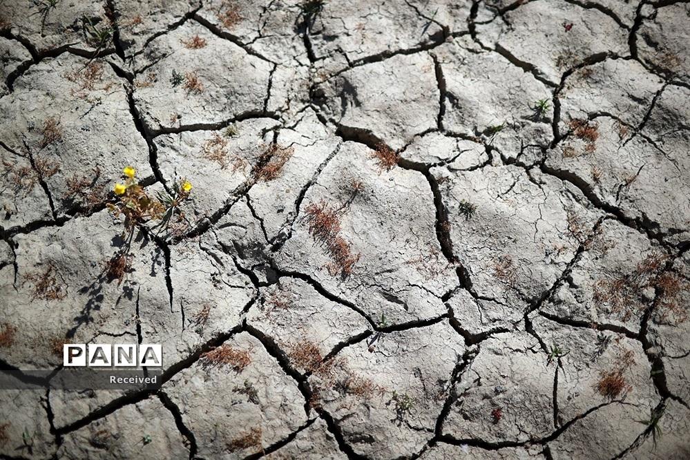 فاجعه خشکسالی در کالیفرنیا