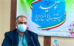 ٨۶ پروژه تولیدی و عمرانی در سیستان وبلوچستان به بهرهبرداری میرسد