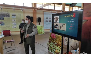 کارگاه آموزشی شناسایی مارهای بومی و سمی در بندر انزلی برگزار شد
