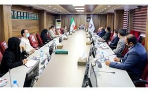 ملکی: حفظ و نگهداری زبان فارسی در اولویت سازمان پژوهش قرار دارد