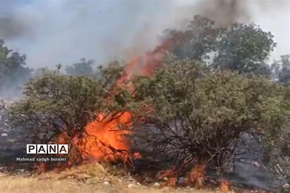 آتش سوزی درختان و مراتع منطقه شبلیز دنا