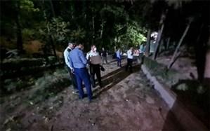 جزئیات و صفر تا صد حادثه بامداد امروز در پارک ملت تهران/ فیلم