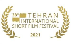 استقبال بینالمللی از جشنواره فیلم کوتاه تهران