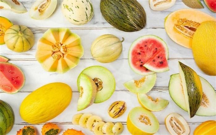 کدام میوه تابستانی شکم سیر کن است!
