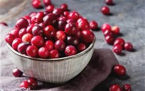 کرنبری؛ از حقایق تغذیهای تا مکملی برای سلامت قلب