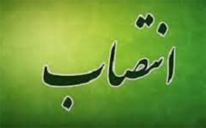 استاندار جدید بوشهر انتخاب شد