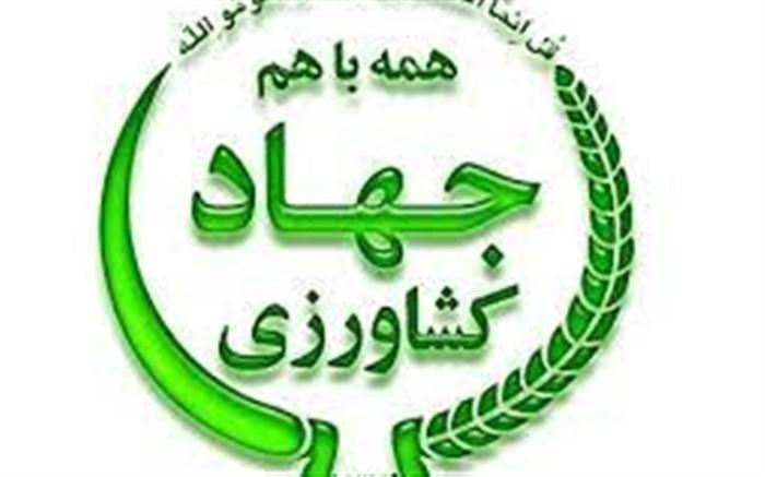 ارم جهاد