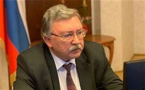 اولیانوف: مذاکرات بروکسل جایگزین گفتوگوهای وین نیست