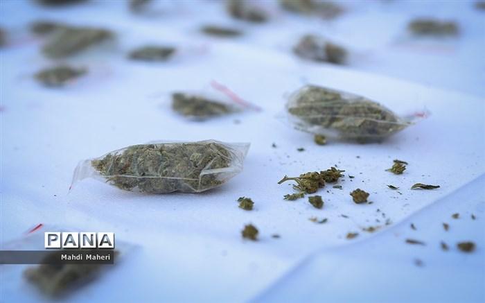 کشف 217 کیلوگرم مواد مخدر در مهاباد
