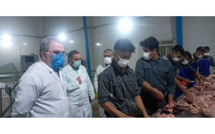 کارگروه رصد و پایش مرغ زنده و گوشت مرغ در نیشابور تشکیل شد