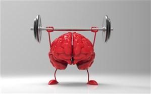 توصیههایی برای تقویت حافظه