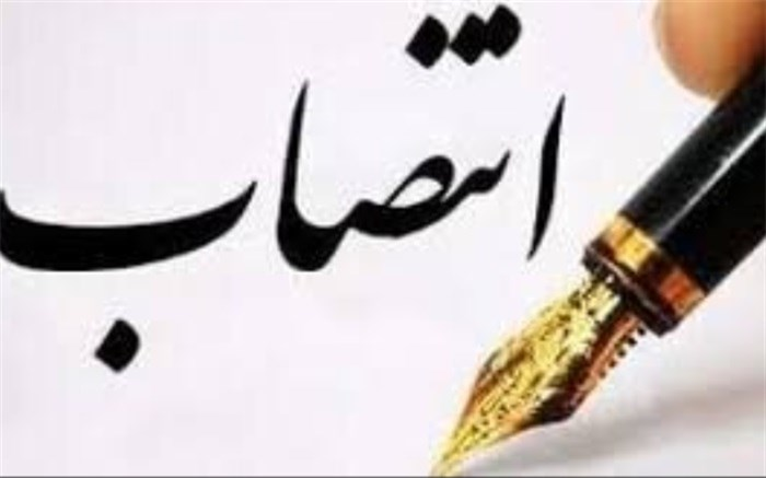 مدیر کل دفتر فنی استانداری بوشهر منصوب شد