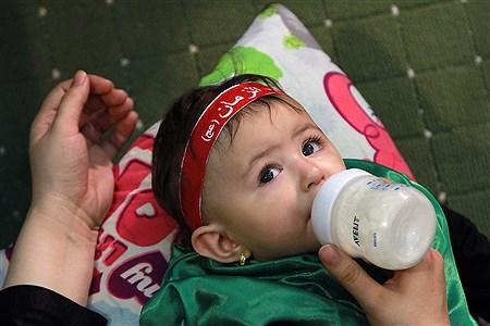 همایش شیرخوارگان حسینی در مصلی تهران | Bahman Sadeghi