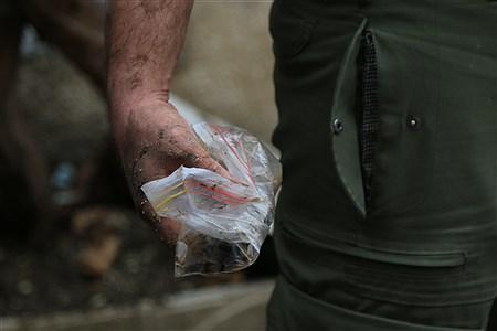 آغاز عملیات گسترده پلیس برای جمعآوری معتادان متجاهر و پاکسازی مناطق  | Mohamad sajad ghadiry