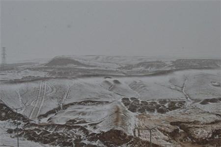 لباس سفید زمستان بر تن بیرجند | MohadesehHessami