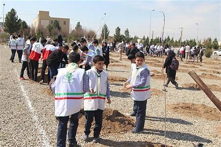 جشن درختکاری در استان قم | mahdi janati