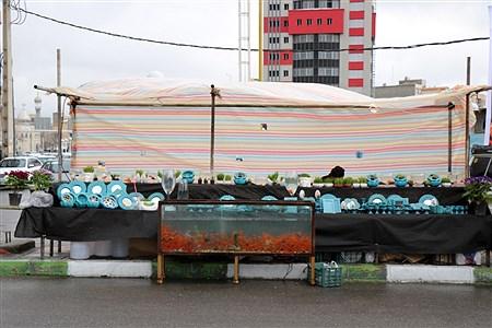 بازار فروش ماهی  و سبزه نوروزی در ارومیه | Amir Hosein Mollazade