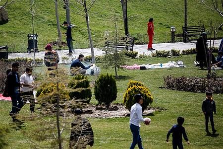 روز طبیعت در دریاچه شهدای چیتگر | Ali Sharifzade