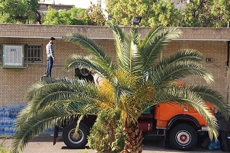 ارسال کمکهای آموزش و پرورش شهرستان ری به مناطق سیلزده | Ali Jafari