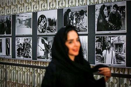 دومین روز سیوهفتمین جشنواره جهانی فیلم فجر | Ali Sharifzade