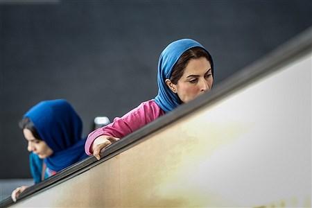 سومین روز سیوهفتمین جشنواره جهانی فیلم فجر | Ali Sharifzade