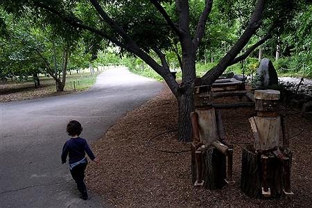 باغ گیاه شناسی ملی ایران | Bahman Sadeghi