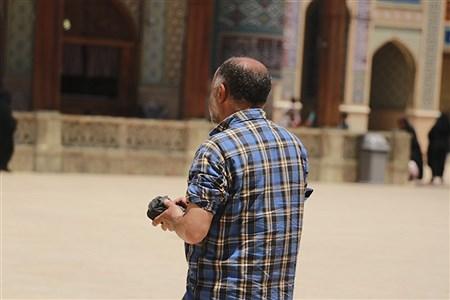 | fatemeh taghipoor