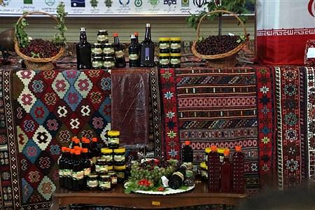 جشنواره زغال اخته در کلیبر   Zahra Bakhshipour